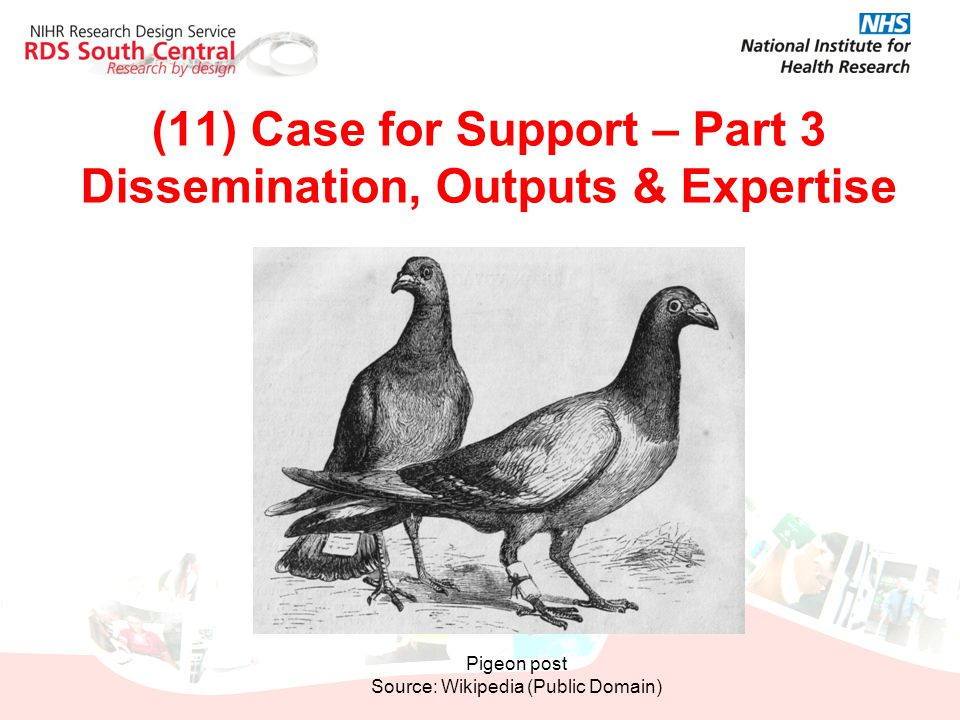 (11) Case for Support – Part 3 Dissemination, Outputs & Expertise