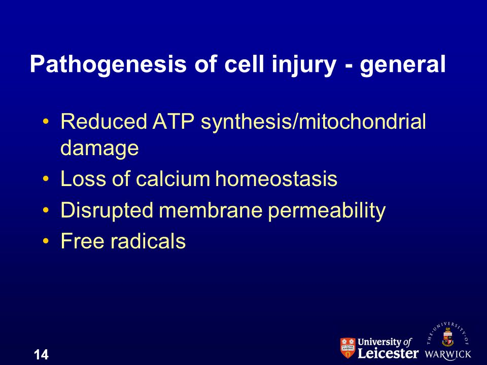 Pathogenesis of cell injury - general