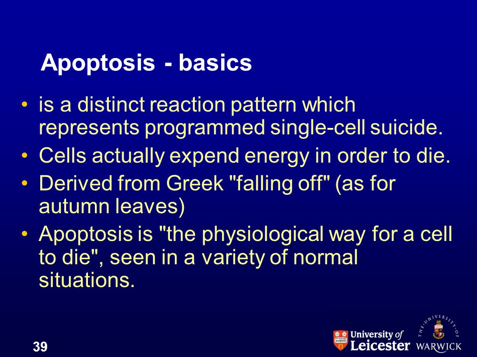 Apoptosis - basics is a distinct reaction pattern which represents programmed single-cell suicide. Cells actually expend energy in order to die.