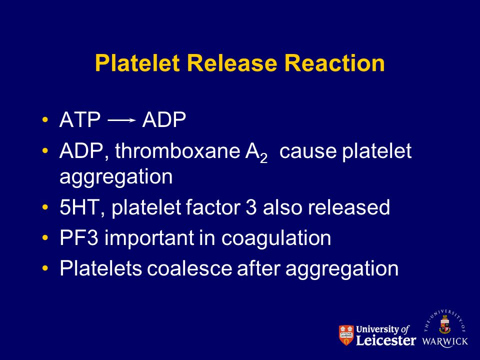 Platelet Release Reaction