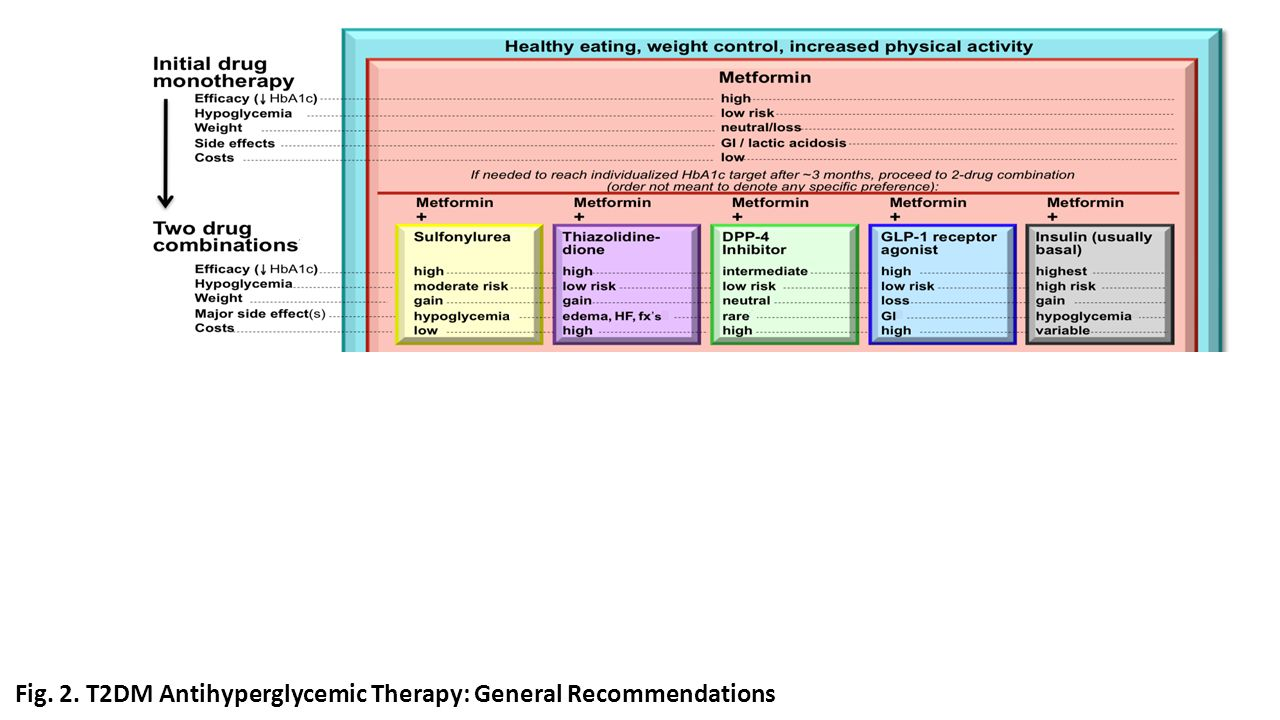 Fig. 2. T2DM Antihyperglycemic Therapy: General Recommendations