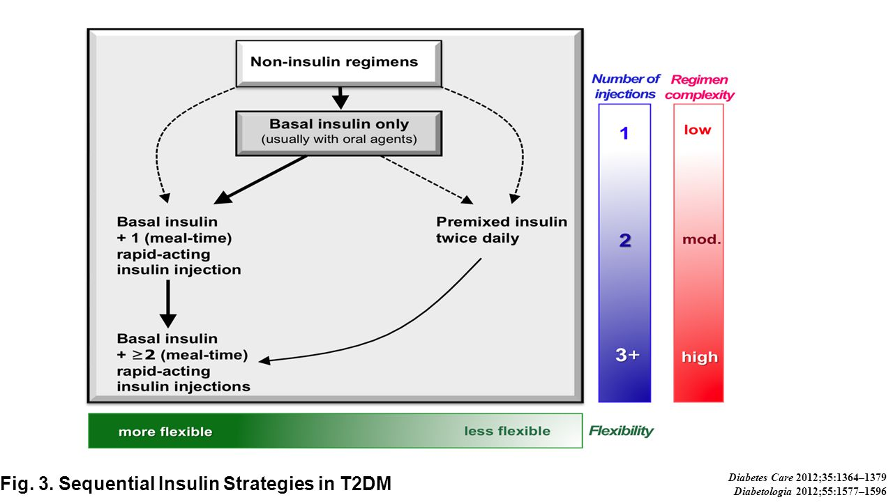 Fig. 3. Sequential Insulin Strategies in T2DM