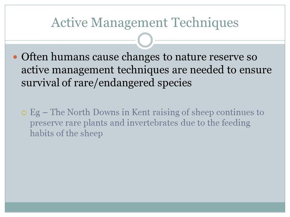 Active Management Techniques