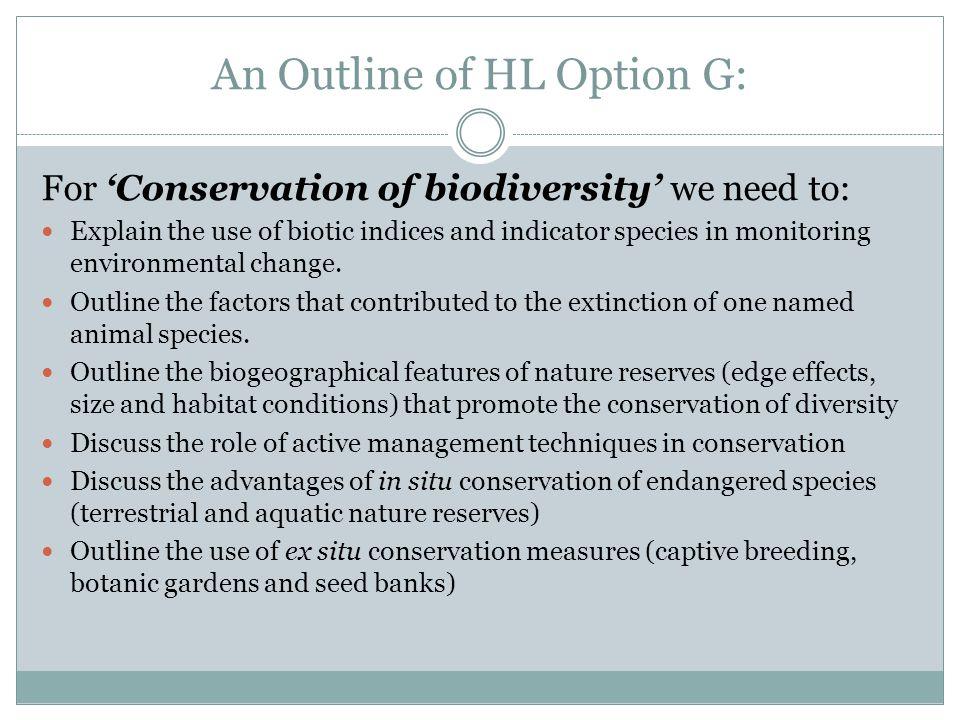 An Outline of HL Option G: