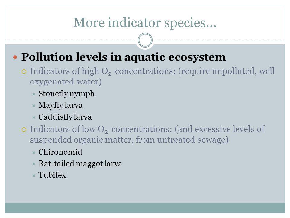 More indicator species...
