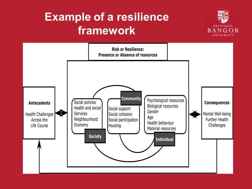 Example of a resilience framework