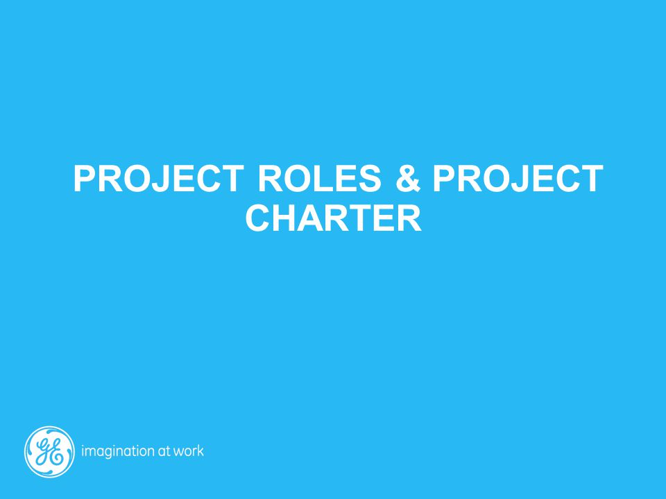 Project roles & project charter