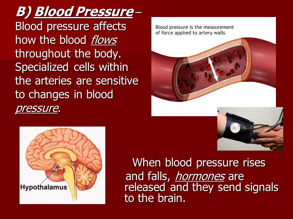 B) Blood Pressure – Blood pressure affects how the blood flows