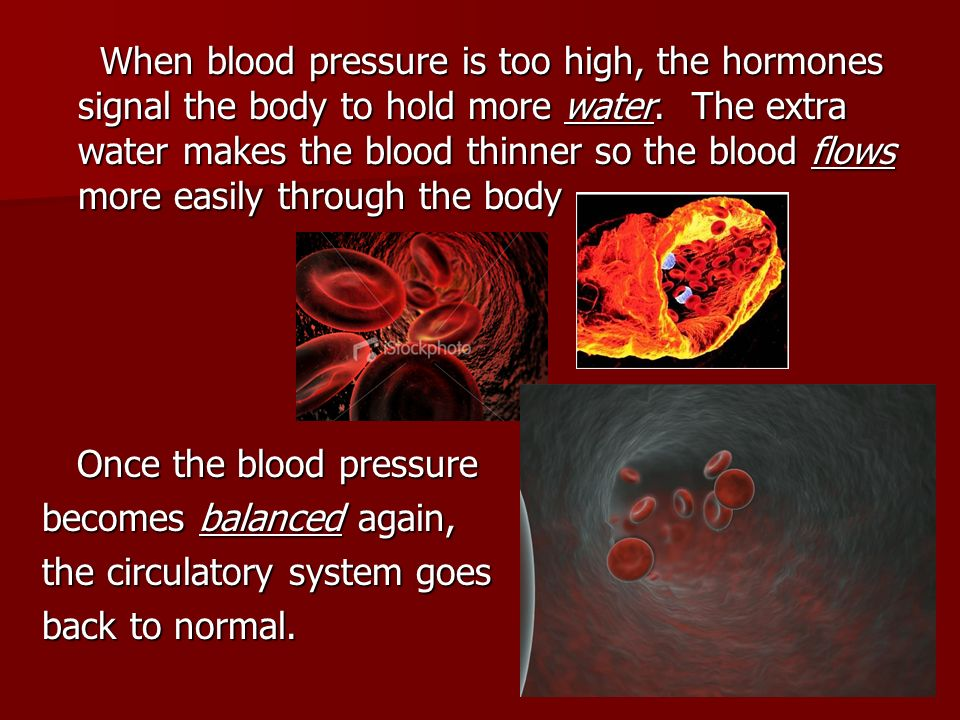 When blood pressure is too high, the hormones signal the body to hold more water. The extra water makes the blood thinner so the blood flows more easily through the body