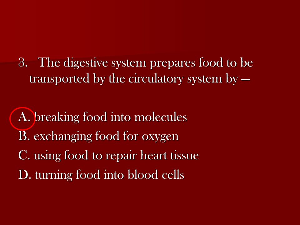 3. The digestive system prepares food to be transported by the circulatory system by —