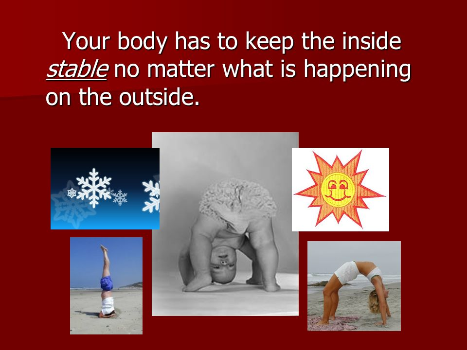 Your body has to keep the inside stable no matter what is happening on the outside.