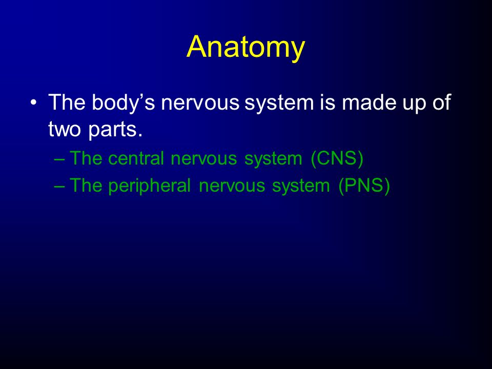 Anatomy The body's nervous system is made up of two parts.