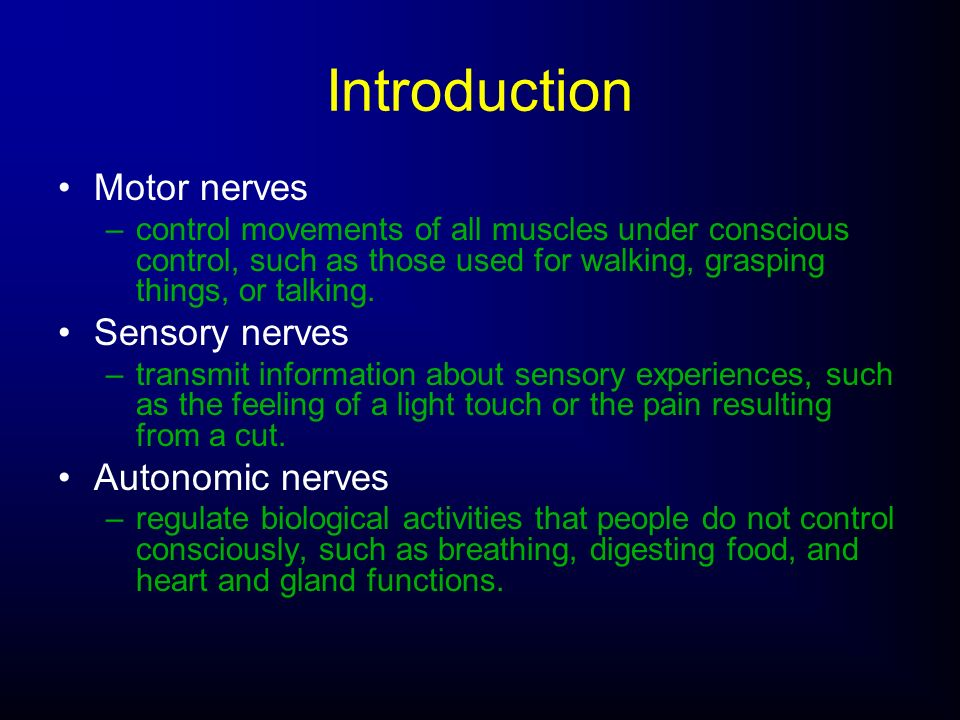 Introduction Motor nerves Sensory nerves Autonomic nerves
