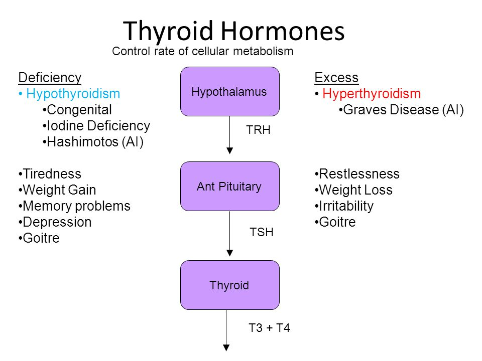 Thyroid Hormones Deficiency Hypothyroidism Congenital