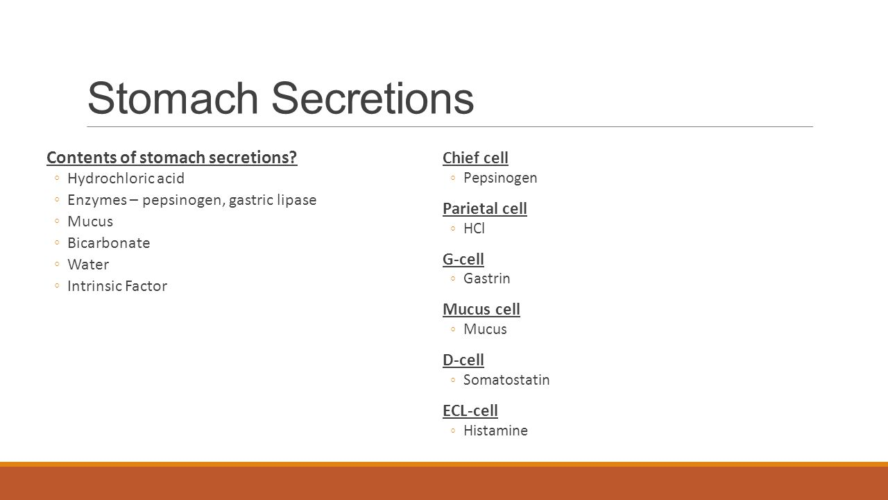 Stomach Secretions Contents of stomach secretions Chief cell