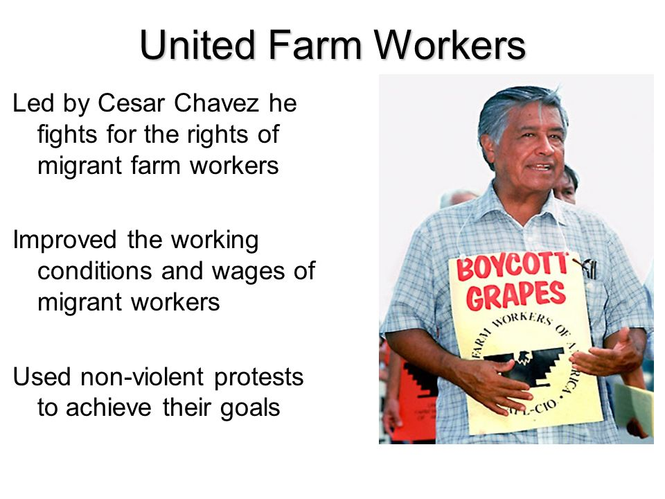 United Farm Workers Led by Cesar Chavez he fights for the rights of migrant farm workers.