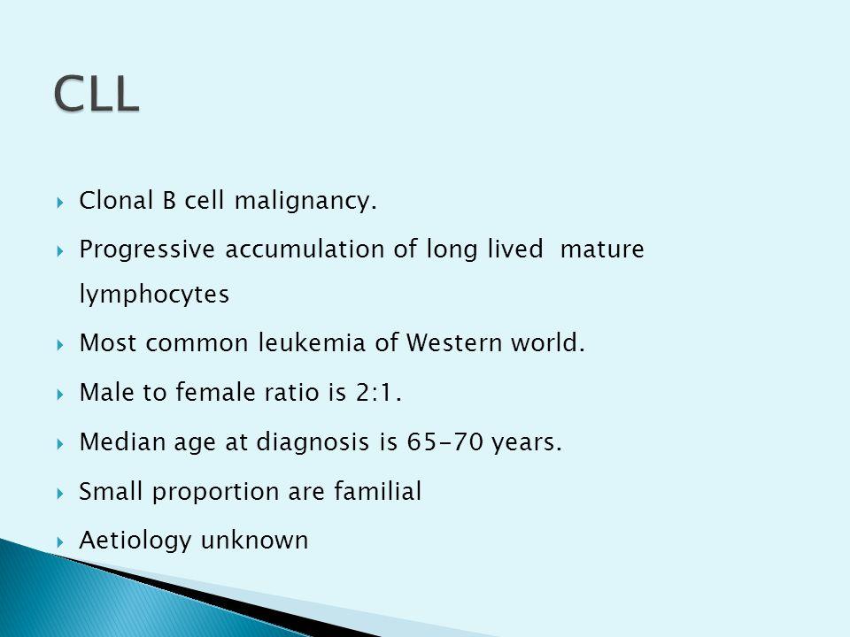 CLL Clonal B cell malignancy.