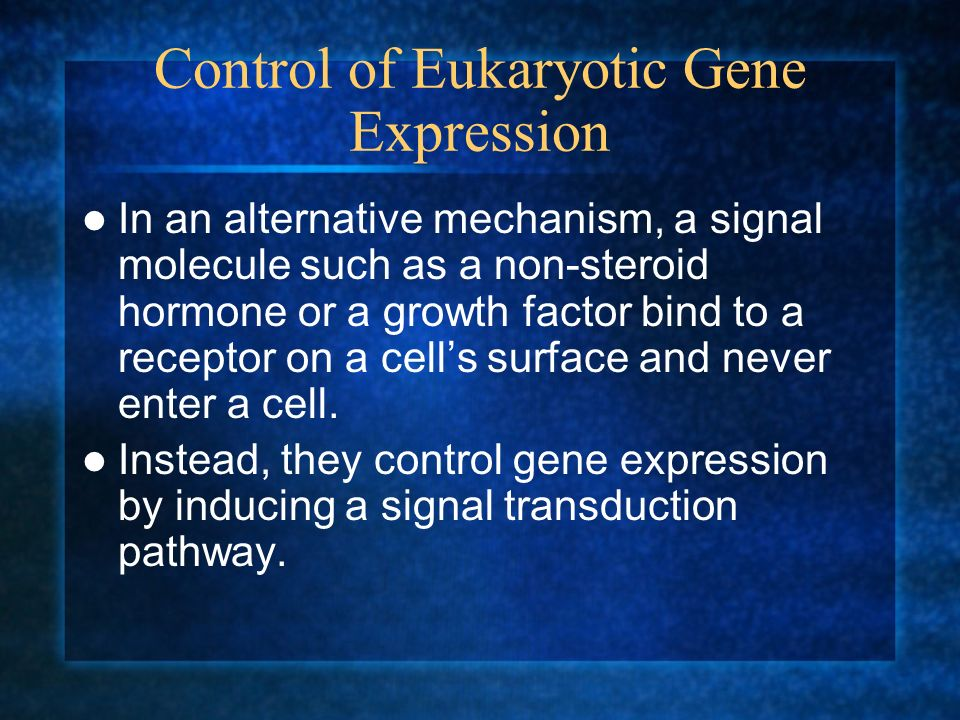 Control of Eukaryotic Gene Expression