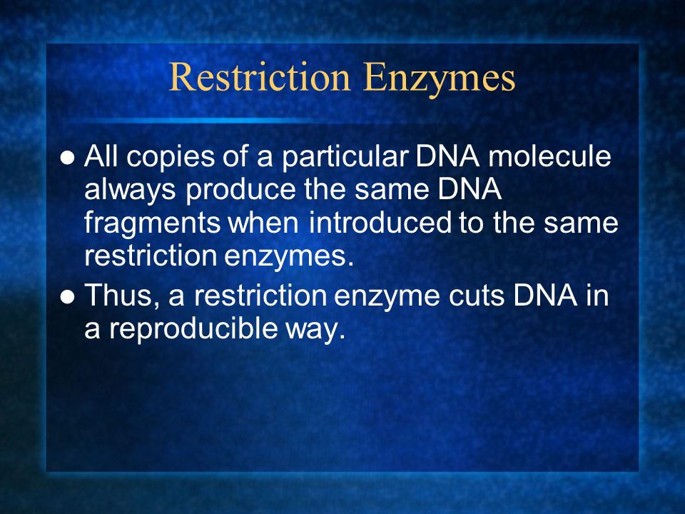 Restriction Enzymes All copies of a particular DNA molecule always produce the same DNA fragments when introduced to the same restriction enzymes.