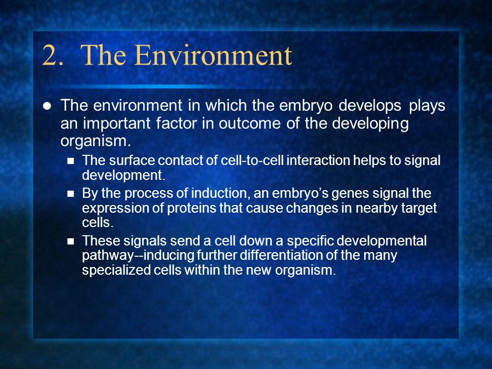 2. The Environment The environment in which the embryo develops plays an important factor in outcome of the developing organism.