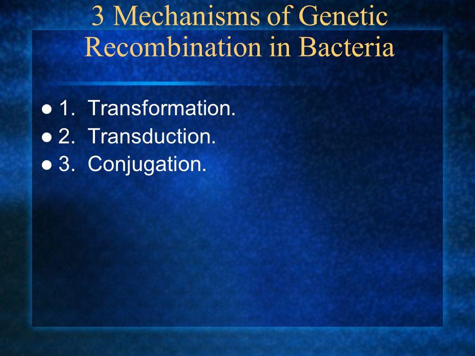 3 Mechanisms of Genetic Recombination in Bacteria