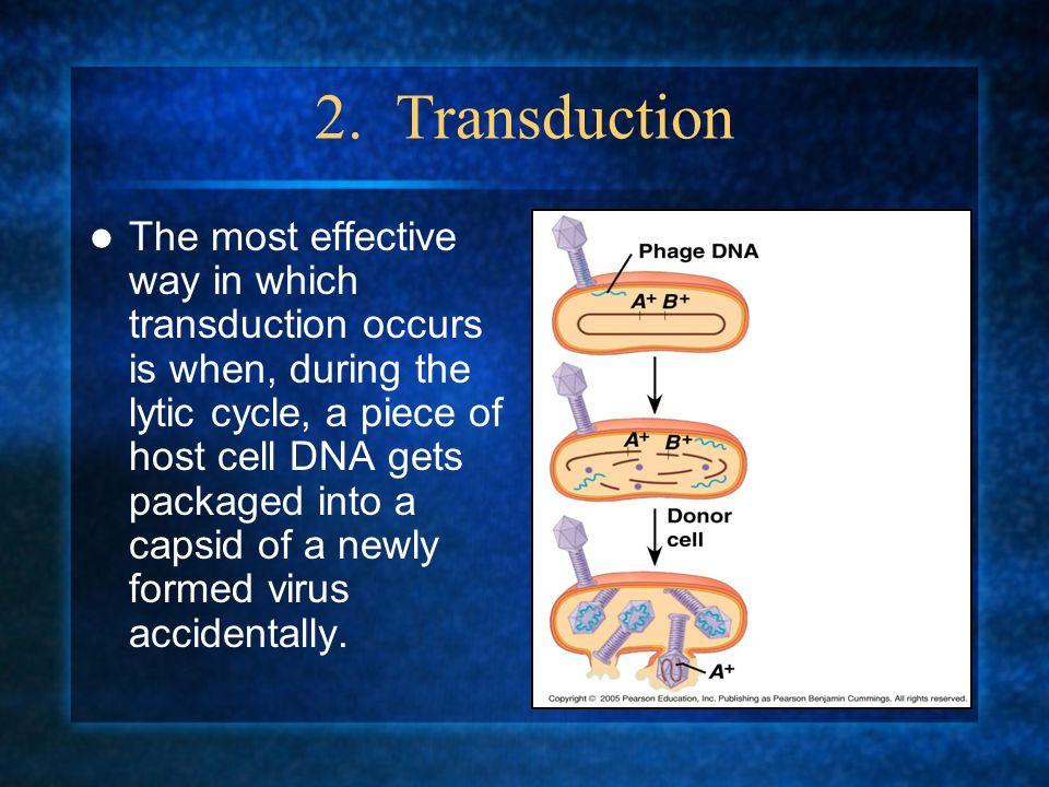 2. Transduction