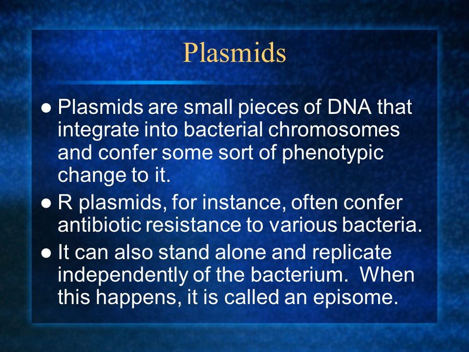 Plasmids Plasmids are small pieces of DNA that integrate into bacterial chromosomes and confer some sort of phenotypic change to it.