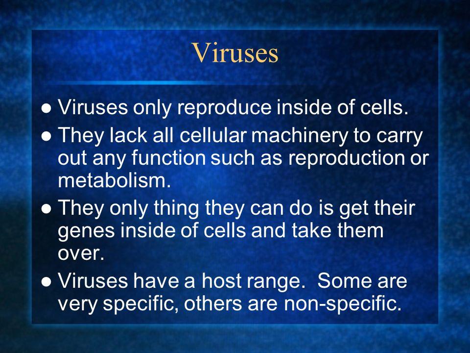 Viruses Viruses only reproduce inside of cells.