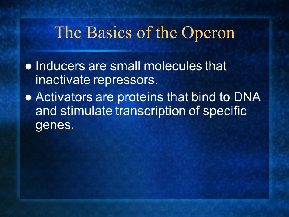The Basics of the Operon