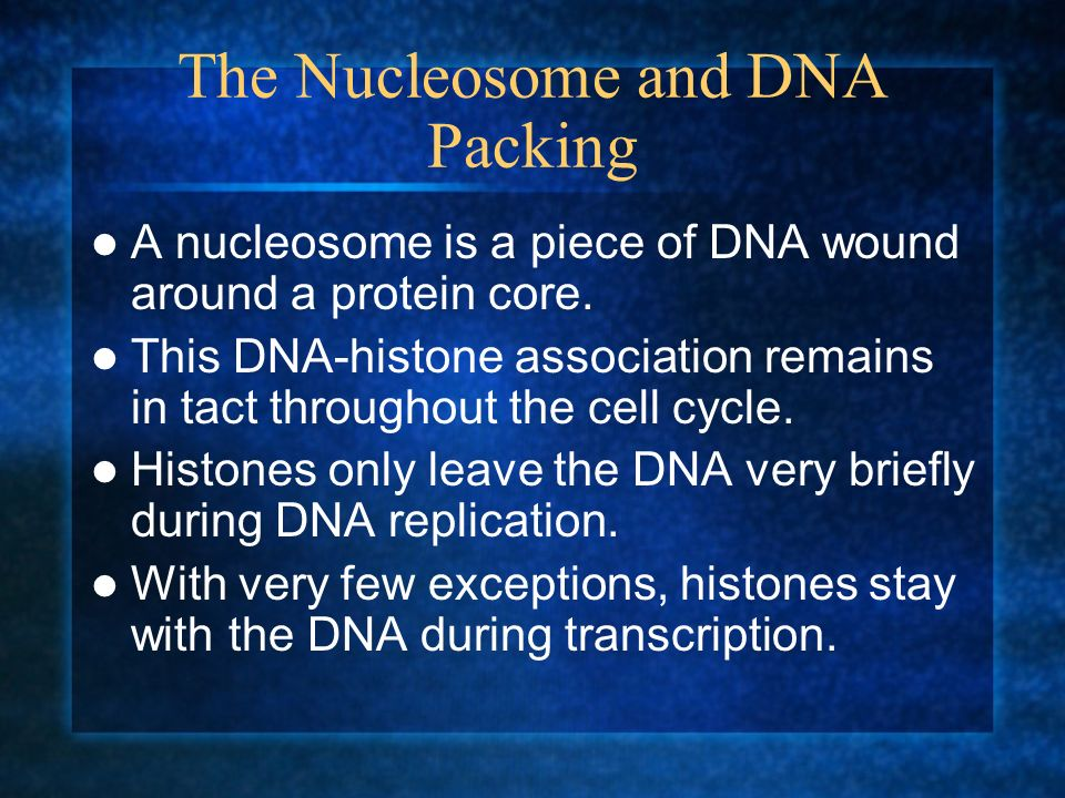 The Nucleosome and DNA Packing