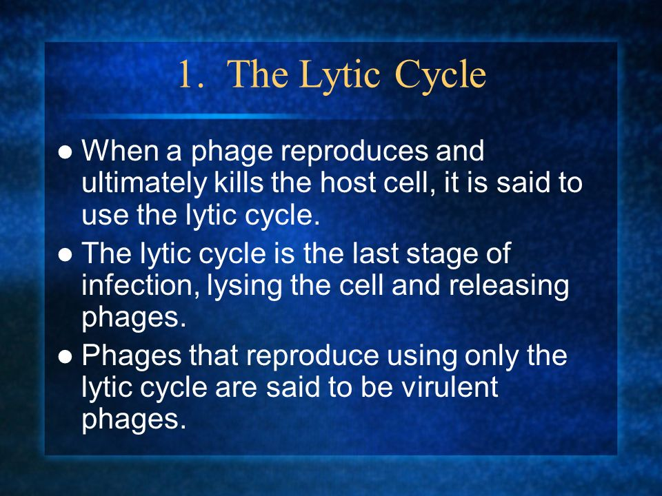 1. The Lytic Cycle When a phage reproduces and ultimately kills the host cell, it is said to use the lytic cycle.