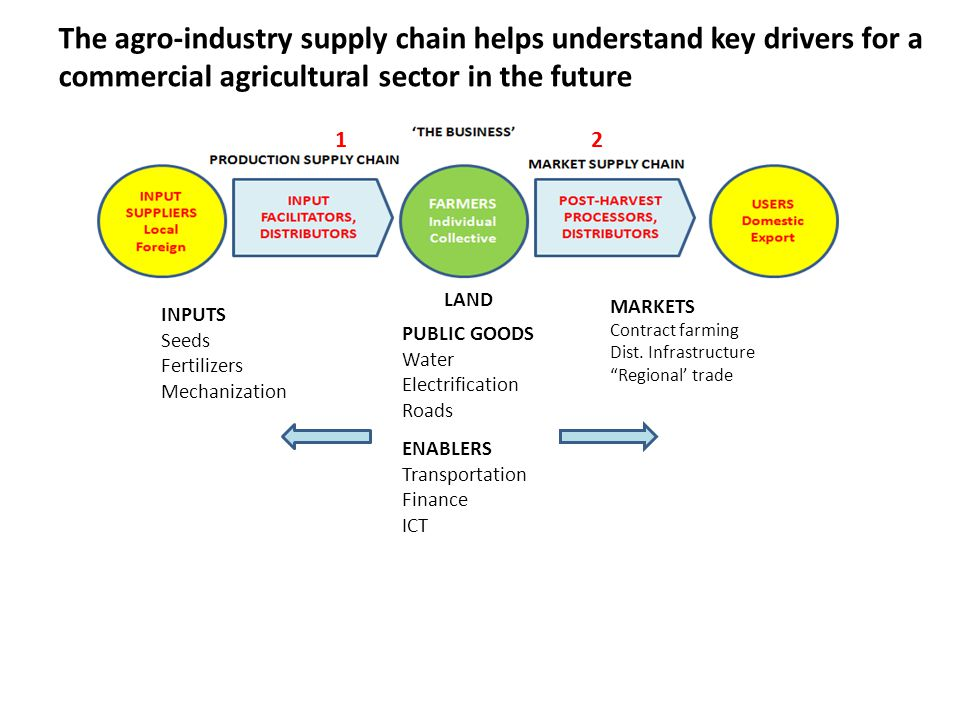 The agro-industry supply chain helps understand key drivers for a commercial agricultural sector in the future