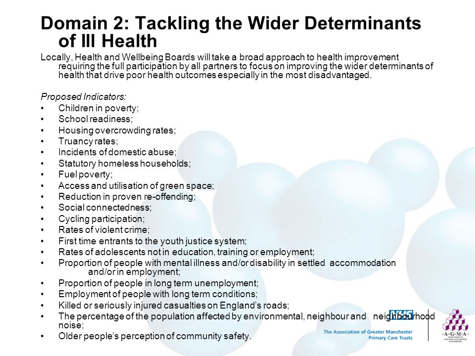 Domain 2: Tackling the Wider Determinants of Ill Health