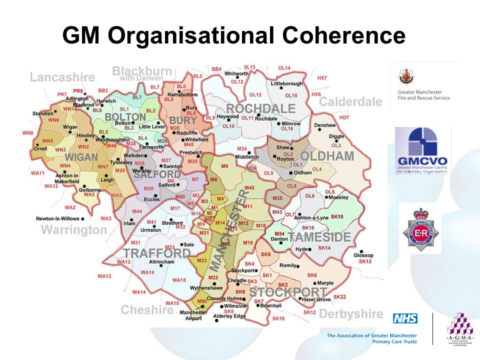 GM Organisational Coherence