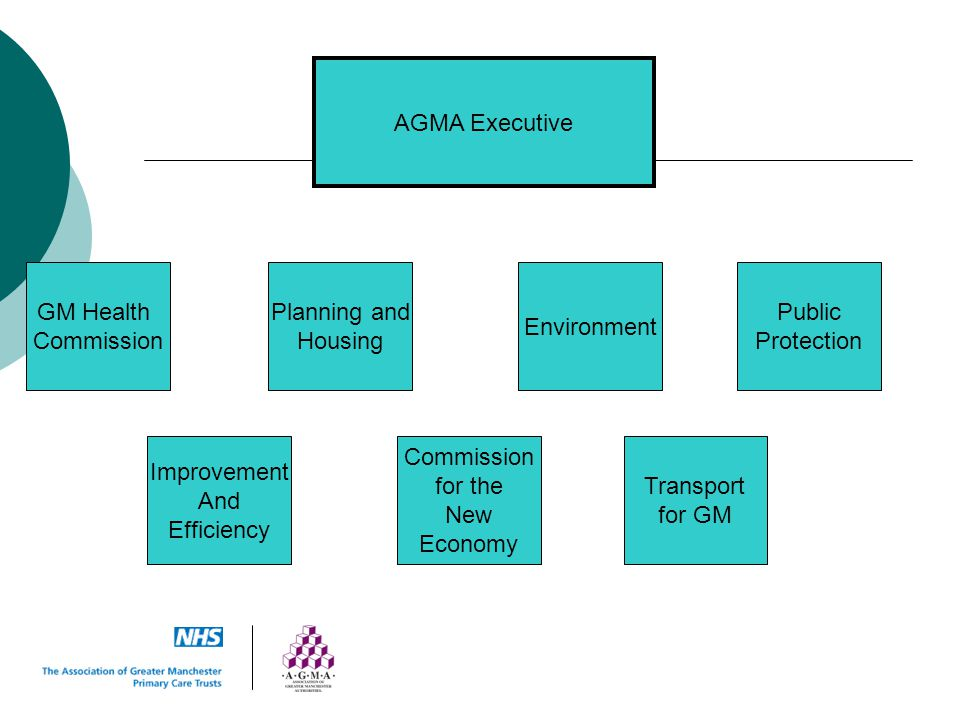AGMA Executive GM Health. Commission. Planning and. Housing. Environment. Public. Protection.