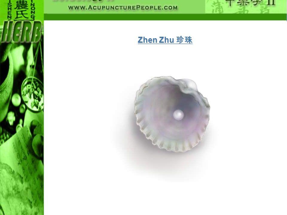 Zhen Zhu 珍珠