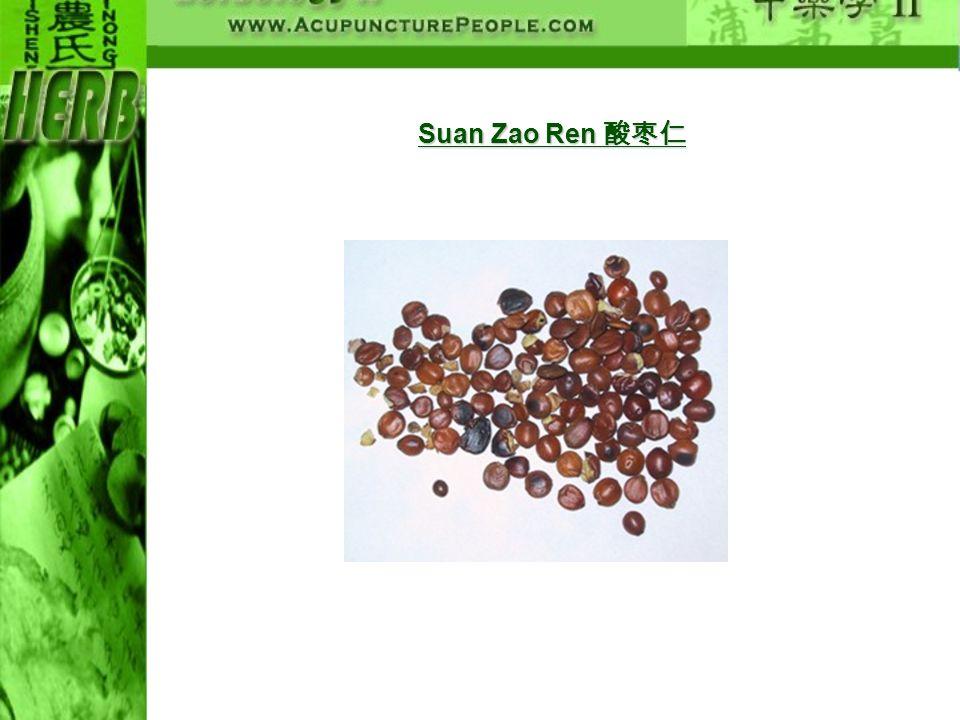 Suan Zao Ren 酸枣仁