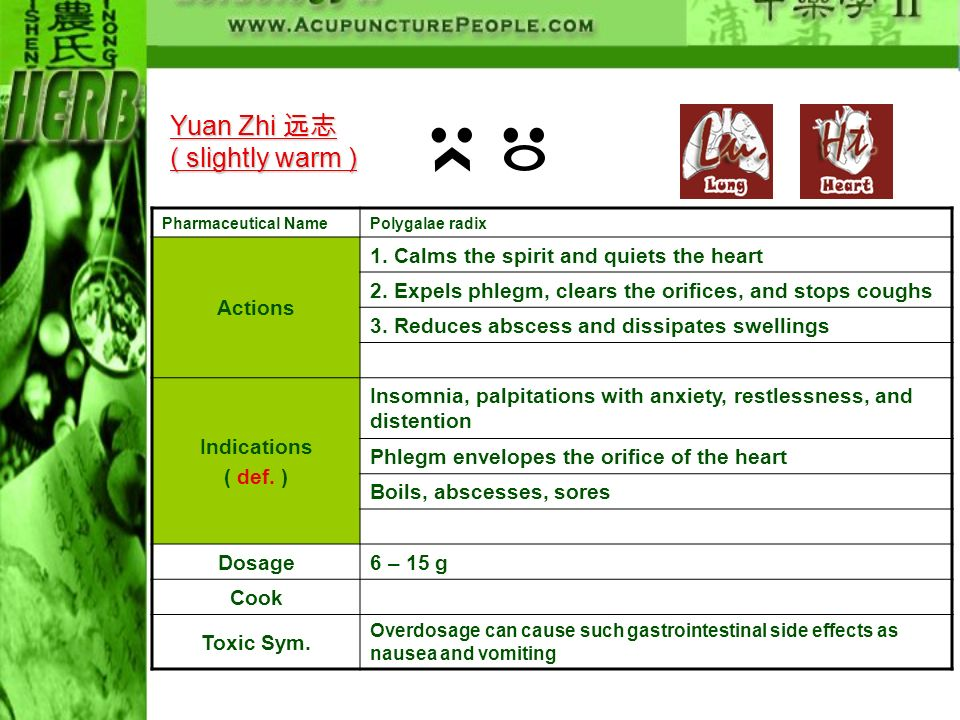 Yuan Zhi 远志 ( slightly warm ) Actions