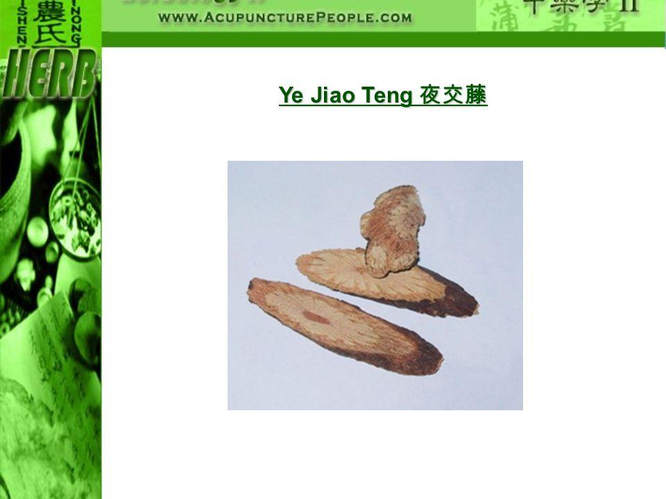Ye Jiao Teng 夜交藤
