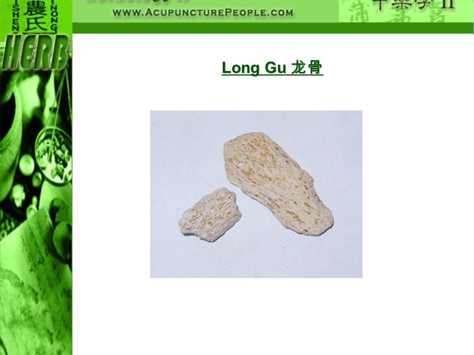 Long Gu 龙骨
