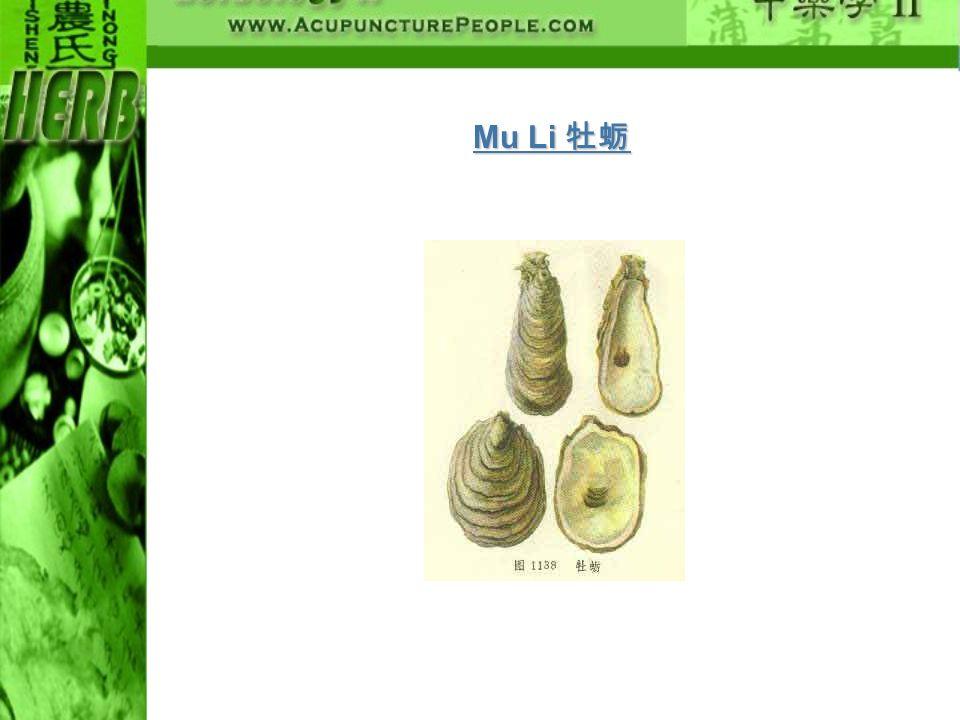 Mu Li 牡蛎