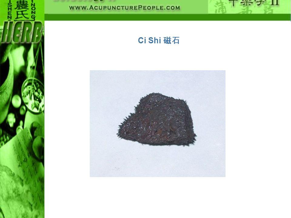 Ci Shi 磁石