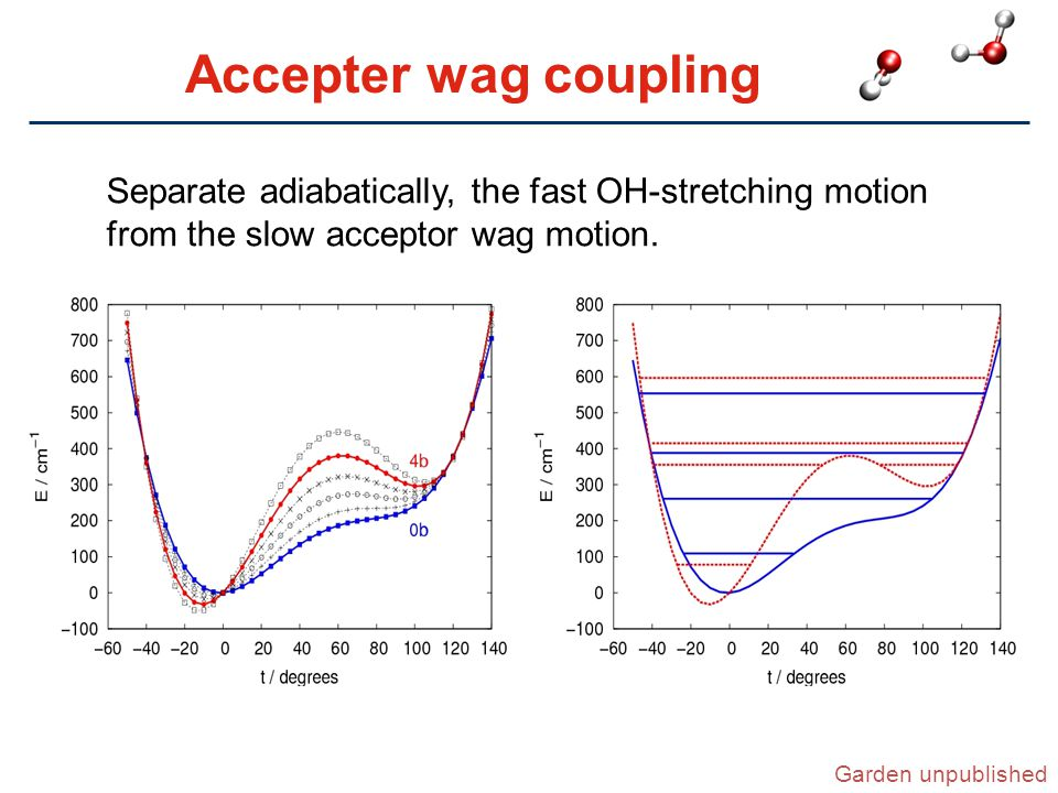 Accepter wag coupling Separate adiabatically, the fast OH-stretching motion from the slow acceptor wag motion.