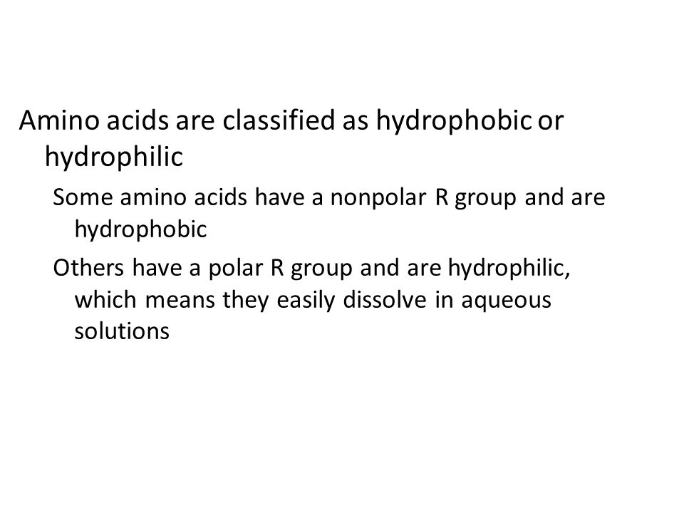 Amino acids are classified as hydrophobic or hydrophilic