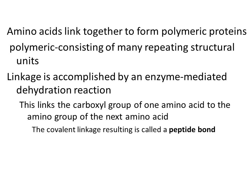 Amino acids link together to form polymeric proteins