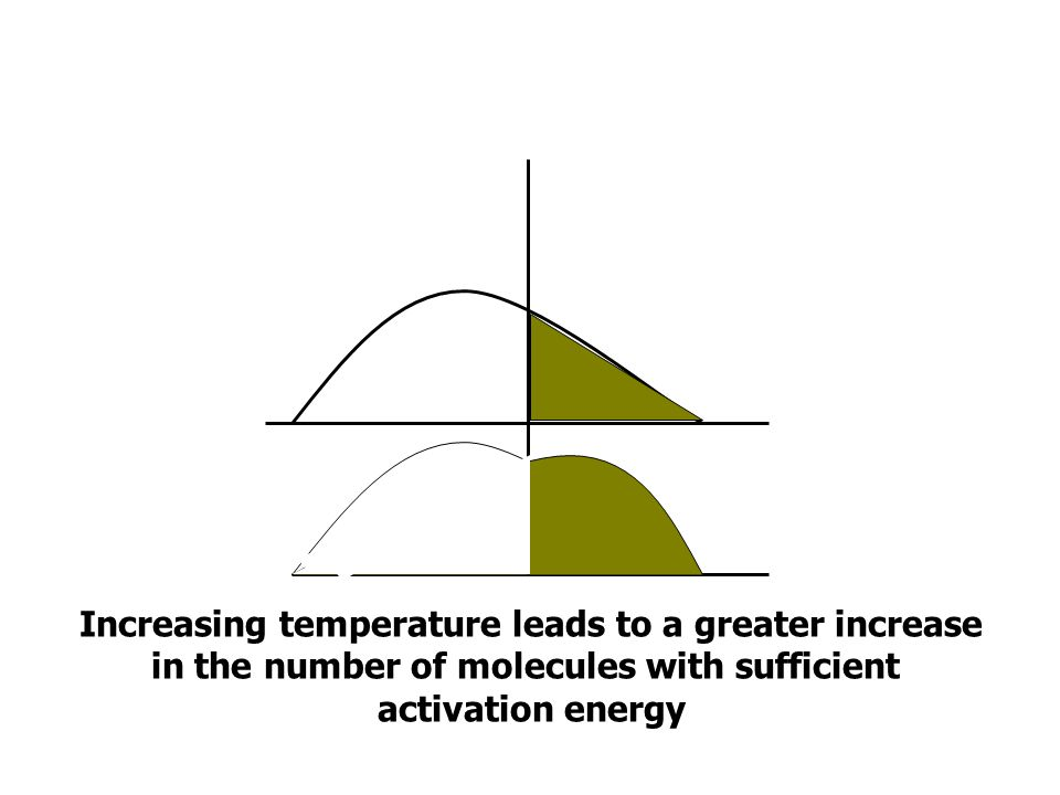 Increasing temperature leads to a greater increase