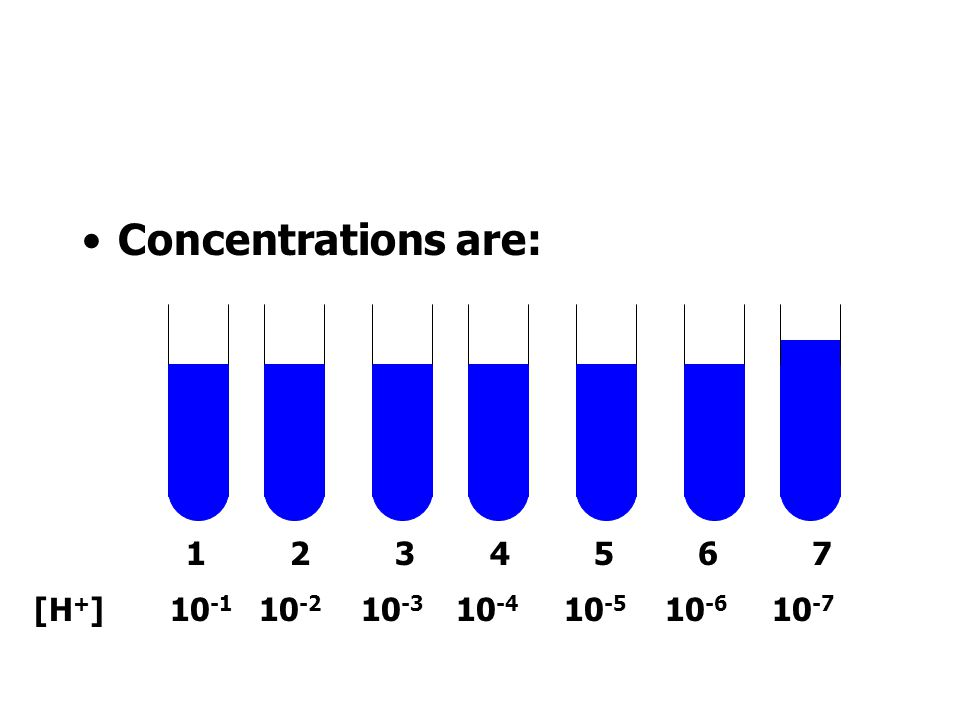 Concentrations are: 1 2 3 4 5 6 7.