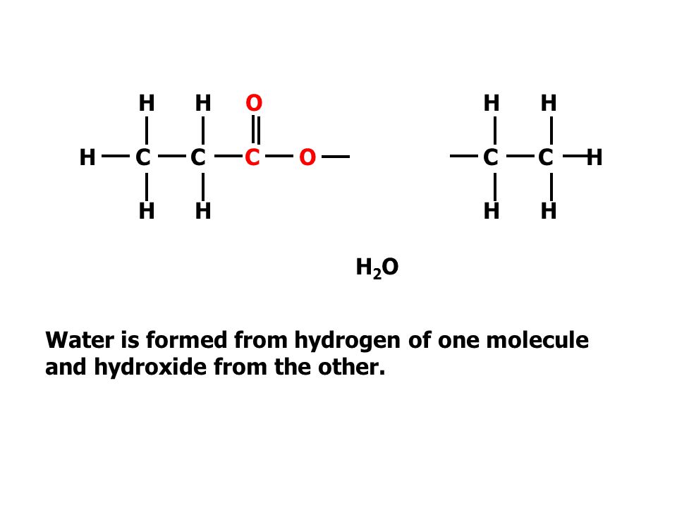 H H O H C C C O. H H. H H. C C H. H2O. Water is formed from hydrogen of one molecule.