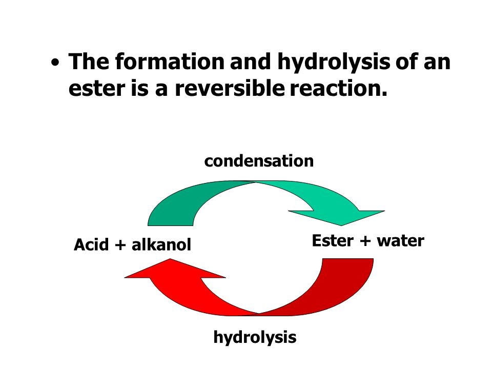 The formation and hydrolysis of an ester is a reversible reaction.