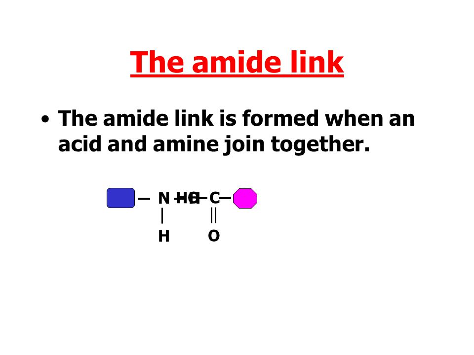 The amide link The amide link is formed when an acid and amine join together. N H H HO C O